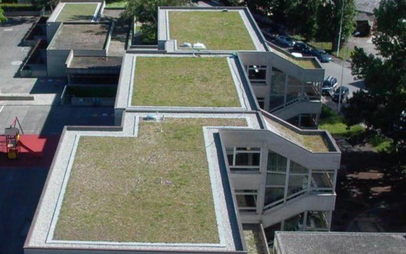 Aménagement des toits - Association CONVIVE, pour un environnement COnstruit VIvant et VErt