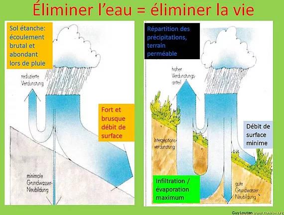 Gestion des eaux pluviales à la parcelle - Gestion de l'eau - Association CONVIVE pour un environnement COnstruit VIvant et VErt